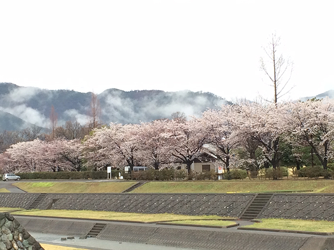 Minami Alps City – a Paradise in Spring (Togenkyo)