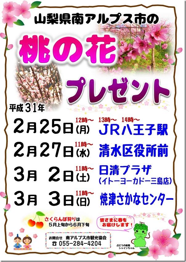 """""""春をお届け"""" 桃の花をお配りします"""