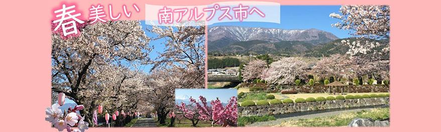 南アルプス市の桜スポット